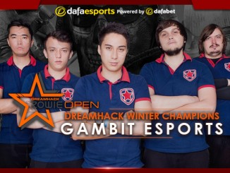 Gambit Gaming: the winners of the Winter DreamHack