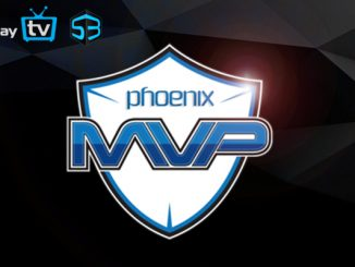 WePlay Dota League Seaon 3 Winners MVP Phoenix
